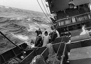 Männer beim Fischfang auf einem Seitentrawler