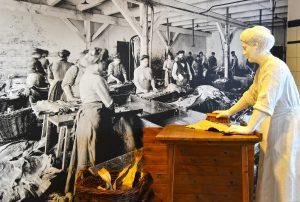 Fischarbeiterin in der Klippfischproduktion